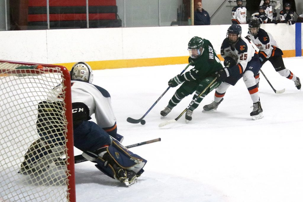 Nelson Leafs comeback to double up Nitehawks