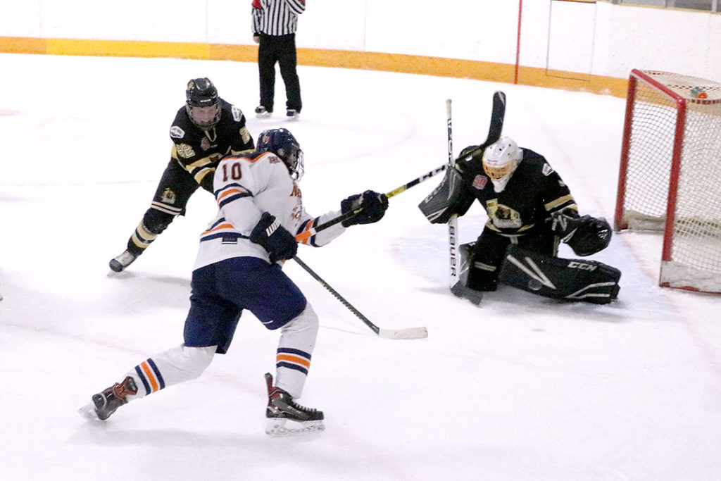 Nemethy lifts Nitehawks to 6-1 win over Border Bruins